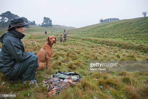 game keeper (45 years old) with vizsla pointer (canis lupus familiaris) and red-legged partridge (alectoris rufa) that have been shot by the hunters during an organized hunt. scotland, uk - 45 49 anni foto e immagini stock