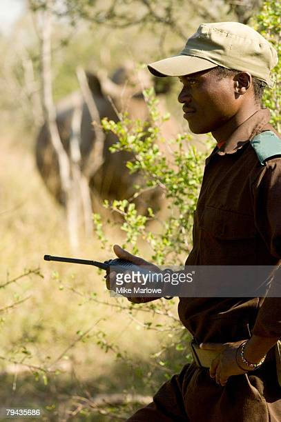 a game ranger in swaziland tracking rhino, on foot, with a rhino in the background approximately 25 metres away. swaziland - swaziland fotografías e imágenes de stock