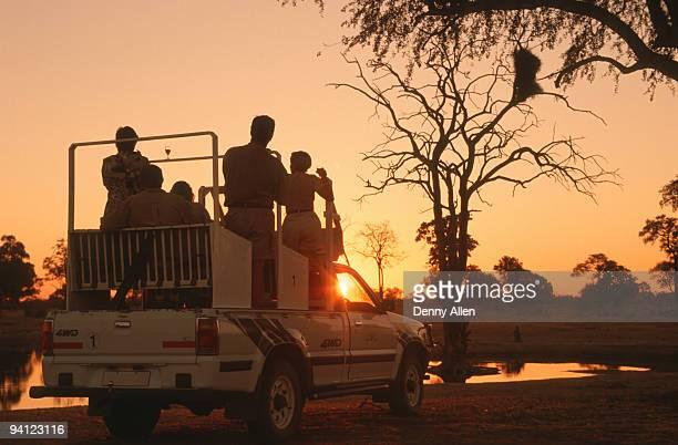 Game-drive safari at sunset, Zimbabwe