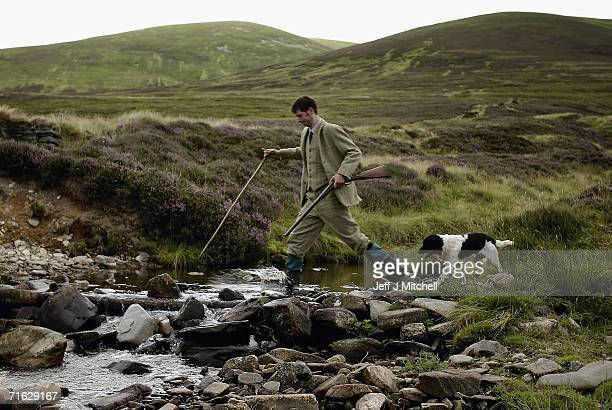 Gamekeeper Andrew Drummond crosses a stream with his springer spaniel on Drumochter Moore on the Milton Estate on August 11 2006 Dalwhinnie in...