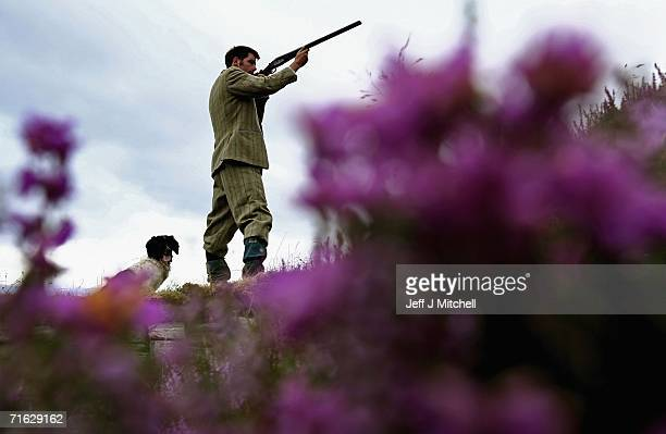Gamekeeper Andrew Drummond stands with his springer spaniel on Drumochter Moore on the Milton Estate August 11 2006 Dalwhinnie in ScotlandThe Game...