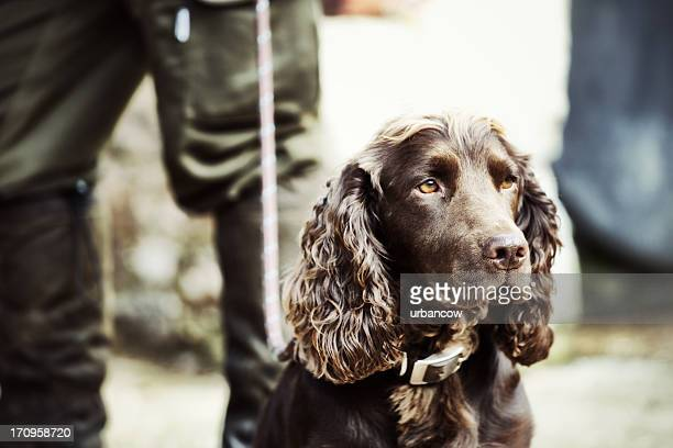 Gamekeeper standing with his dog