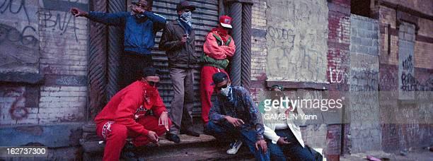 Gang In Los Angeles