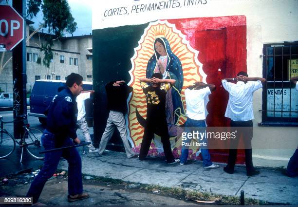 Gang members get arrested during an LAPD police sweep, a search turned up weapons and drugs. October 16, 1984 Compton, South Central Los Angeles.,...
