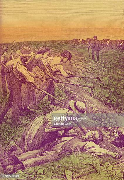 'Gang system' farming late 19th century illustration Division of slave labour used on plantations Boy has fainted from exhaustion
