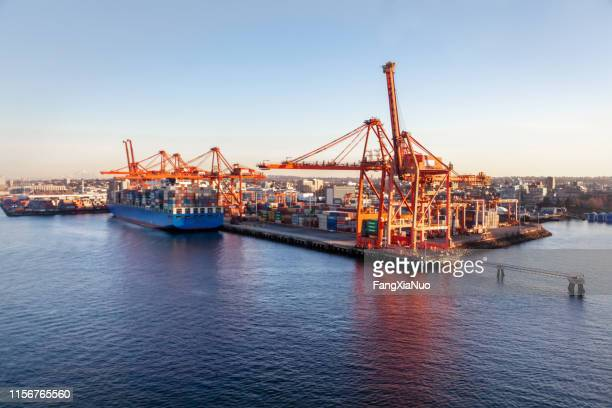 gantry cranes at container terminals vancouver, bc - built structure stock pictures, royalty-free photos & images