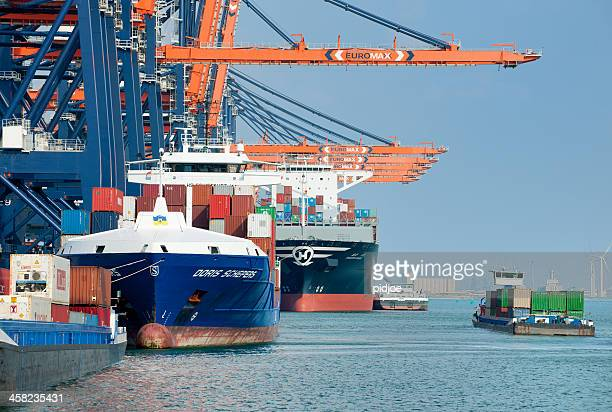 gantry cranes loading cargo container ships in harbor - rotterdam stock pictures, royalty-free photos & images