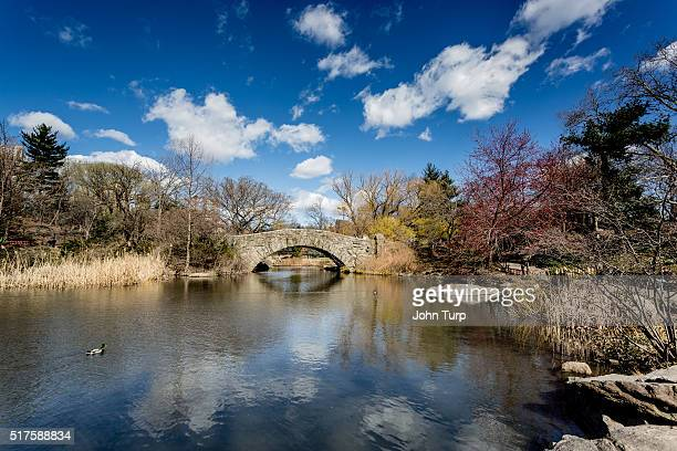 Gapstow Bridge, Central Park New York