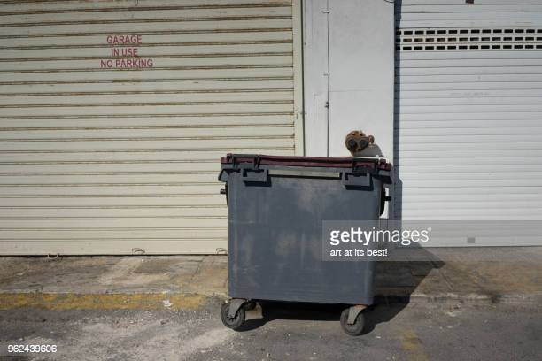 garbage bin - garbage bin stock pictures, royalty-free photos & images