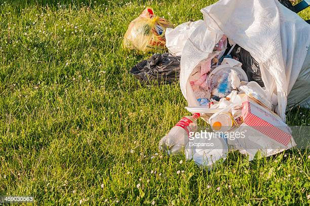 garbage collection in the park at end of picnic day - plastic plate stock photos and pictures