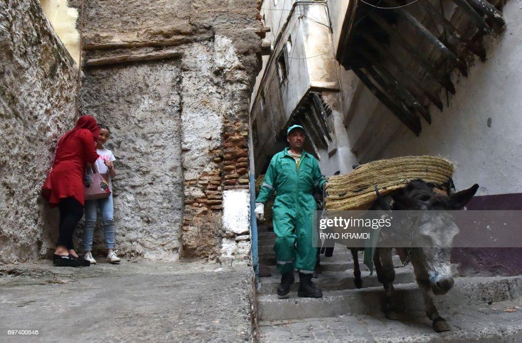 DOUNIAMAG-ALGERIA-SOCIAL-ENVIRONMENT-ANIMAL-HERITAGE : Nachrichtenfoto