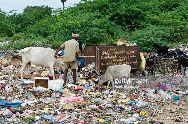 Garbage is a big problem all over India espacially at highly fequented places like pilgrimagesites