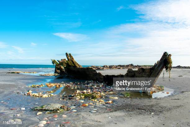 garbage on beach by sea against sky - water pollution stock pictures, royalty-free photos & images