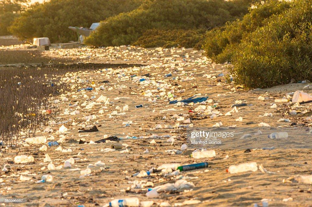Garbage on the beach : Stock Photo