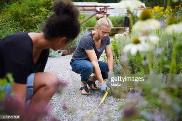 Garden architects measuring footpath in yard