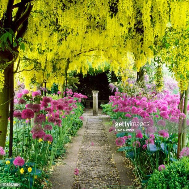 Garden at Barnsley House