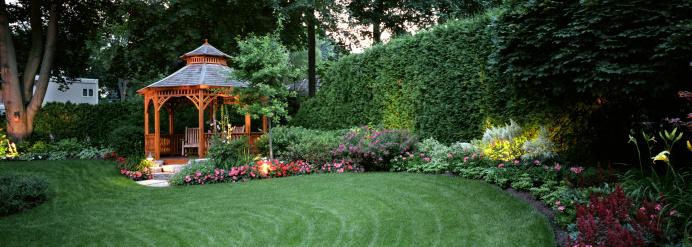 Garden at Night 157442317