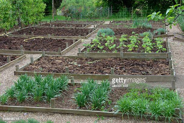 Garden, beds with wooden frames