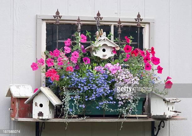 Garden Birdhouse Collection