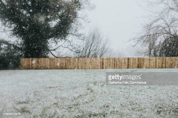 garden covered in snow. untreated wooden fence in the distance. - cold temperature stock pictures, royalty-free photos & images