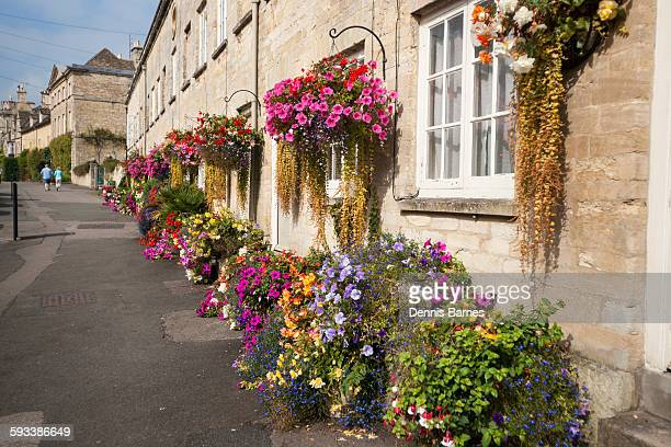 garden flower display, cirencester; cecily street - cirencester stock pictures, royalty-free photos & images
