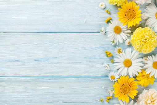 Garden flowers over wooden background 637890514
