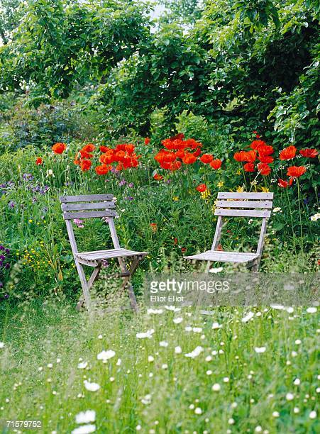 garden furniture in a garden. - oriental poppy stock pictures, royalty-free photos & images