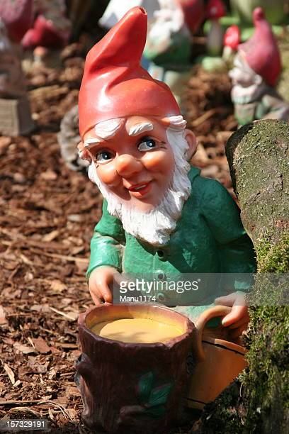 Garden gnome in green shirt and red hat on mulch