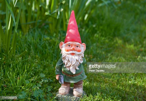 a garden gnome looking at camera - gnome stock pictures, royalty-free photos & images