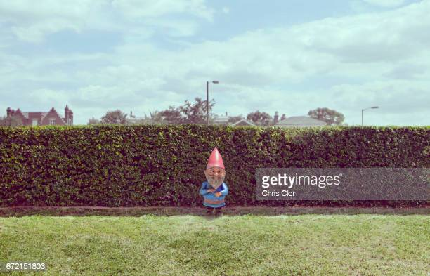 Garden gnome near hedge