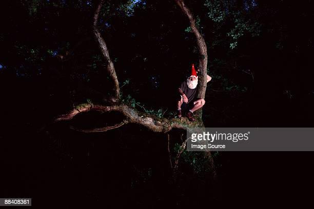 Garden gnome auf Baum