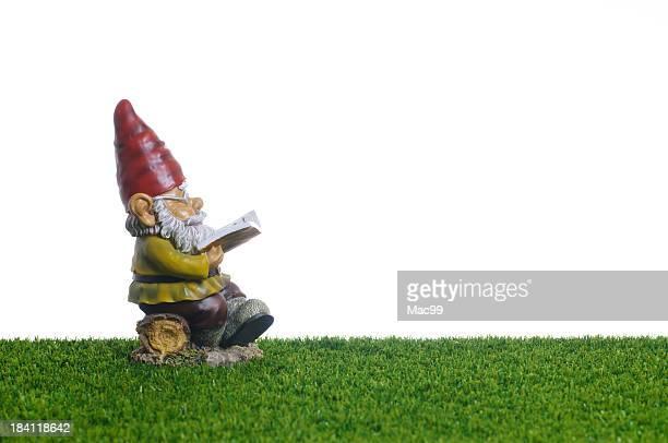 Garden Gnome liest Buch