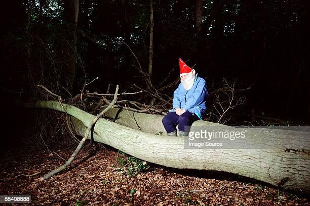 Garden gnome sitzt auf tree trunk