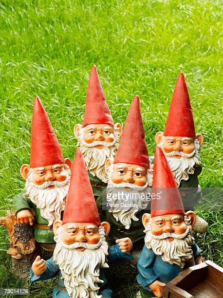 Garden gnomes on grass, elevated view