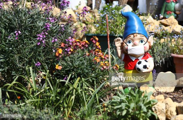 Garden gnomes wearing surgical face masks in the village of Great Houghton on April 26, 2020 in Northampton, England. The British government has...