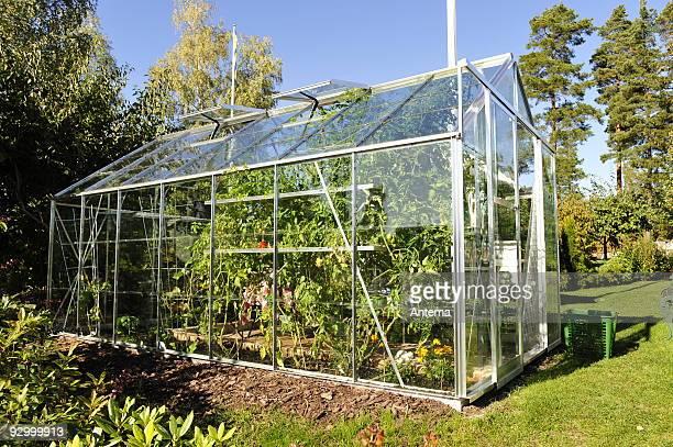 Garden Greenhouse exterior