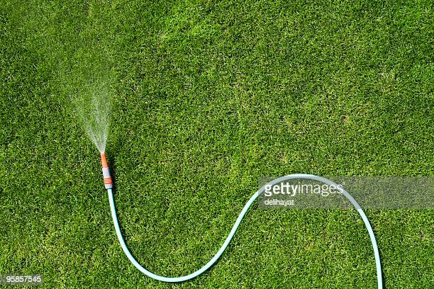 garden hose - watering stock pictures, royalty-free photos & images
