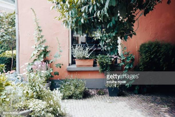 garden in front of a house - voor of achtertuin stockfoto's en -beelden