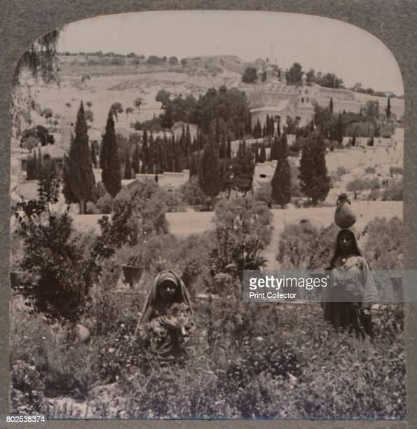 Garden of Gethsemane and Mount of Olives from Greek Gardens' c1900 From Journey in All Lands Palestine [Realistic Travels London Cape Town Bombay...