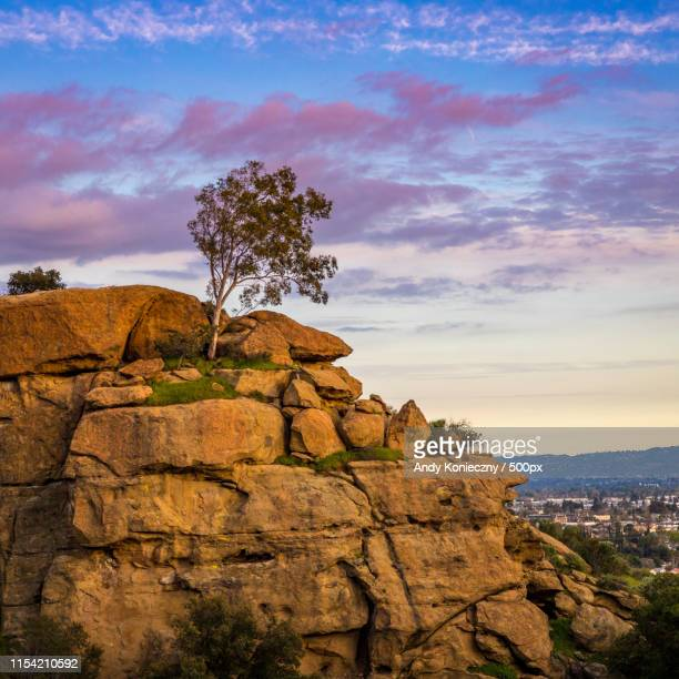 garden of the gods sunset - chatsworth derbyshire stock pictures, royalty-free photos & images