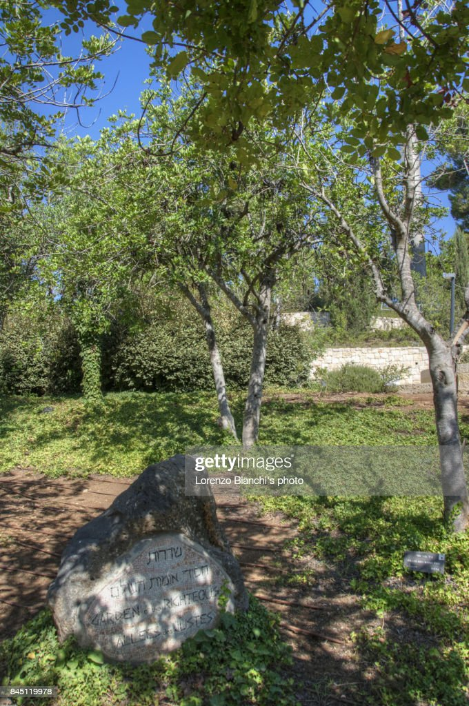 Garden of the Righteous Among the Nations (Yad Vashem, Jerusalem) : Stock Photo