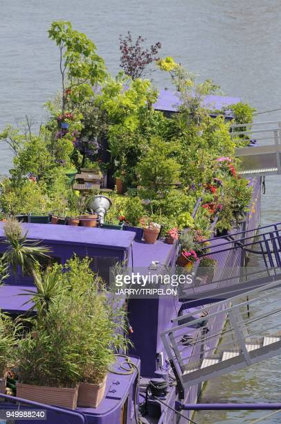 A garden on a canal boat harbour of Port de la Gare and the Arthur Rimbaud path on the banks of the Seine river 13 th district in Paris Ile de France...