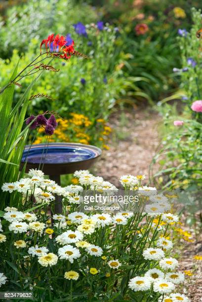 Garden Pathway and the Bird Bath