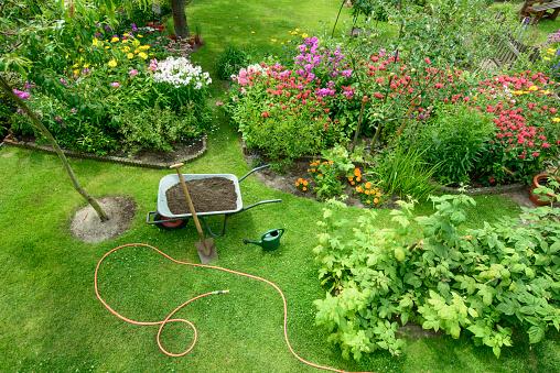 Garden 1008414192
