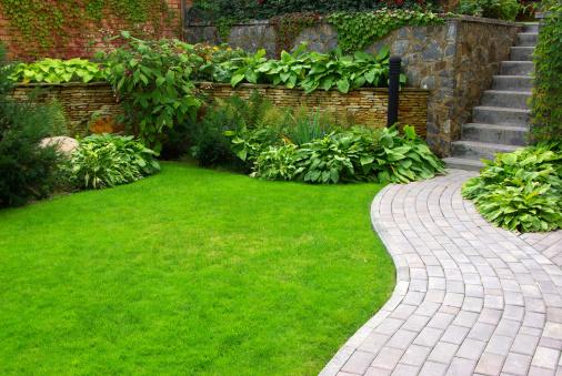 Garden 116366553