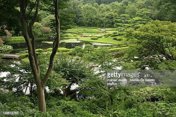 garden - imperial palace tokyo stock photos and pictures