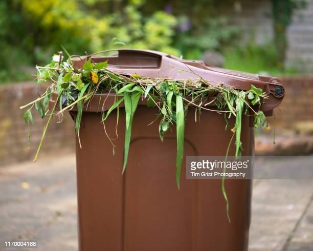 garden recycling bin - orgánico fotografías e imágenes de stock