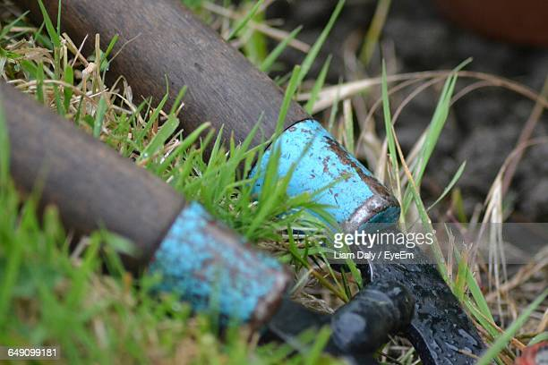 garden shears in grass - pruning shears stock photos and pictures