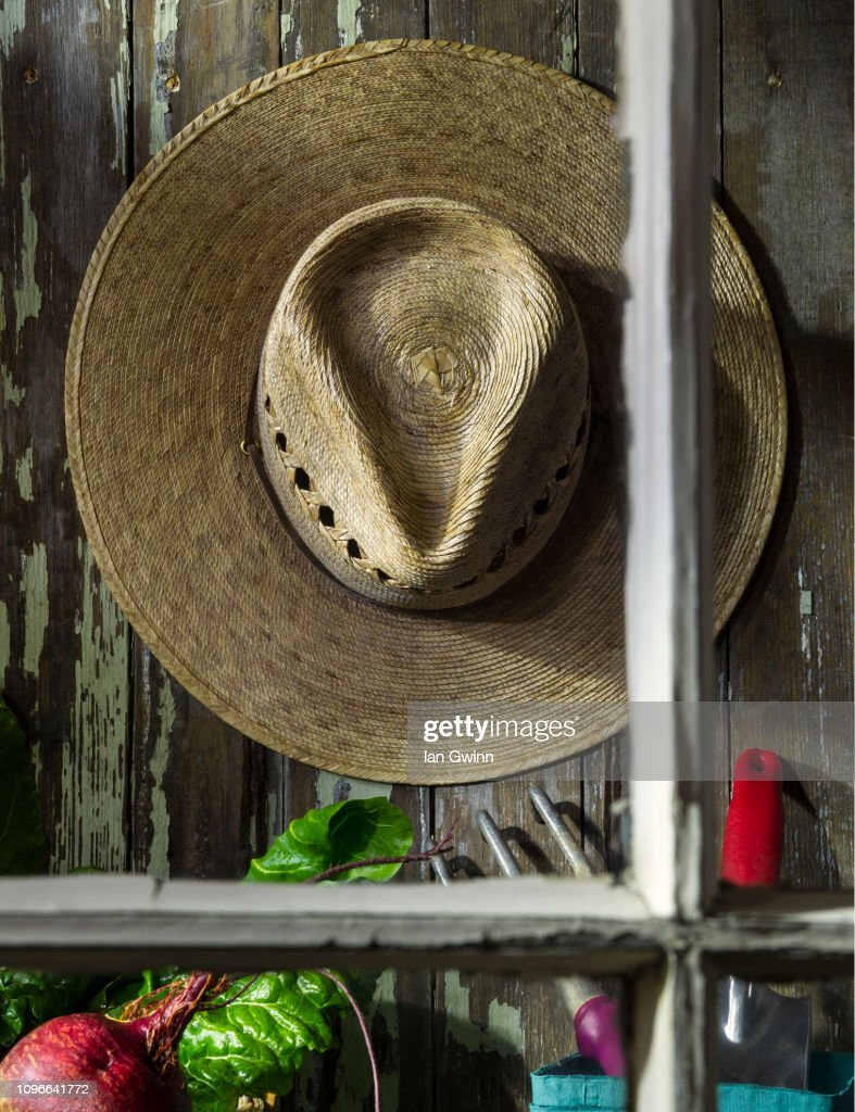 Garden Shed : Stock Photo