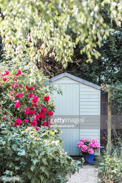 garden shed surrounded by flowers in summer - shed stock pictures, royalty-free photos & images